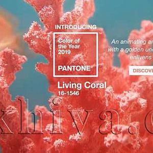 Цвят на 2019 година – жив корал