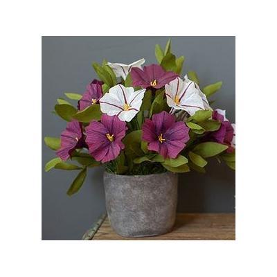 Как се правят хартиени цветя: петуния от креп хартия